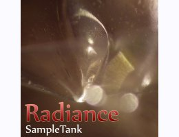 Radiance for Sampletank