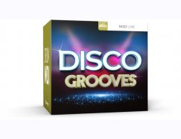 Disco Grooves