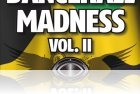 Dancehall Madness Vol II