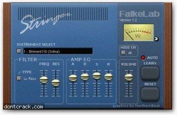 Falkes music lab Stringer