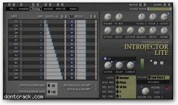 Homegrown Sounds Introjector Lite