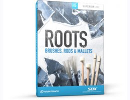 Roots Brushes Rods and Mallets SDX