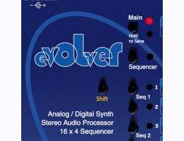 Sequlation for the DSI Evolver