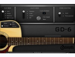 GD-6 Acoustic Guitar