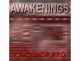 Awakenings PS