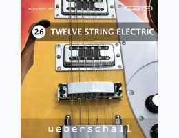 Twelve String Electric