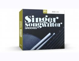 Singer-Songwriter Grooves