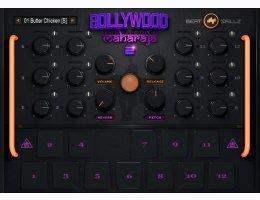 Bollywood Maharaja Drums 2