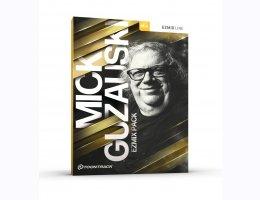 Mick Guzauski EZmix Pack