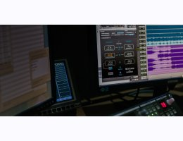 LM-Correct with DynApt extension